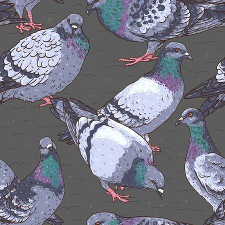 Urban pigeon birds pattern.