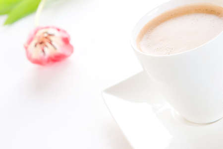 intense flavor: A cup of creamy black coffee on a square saucer with a tulip in the background Stock Photo