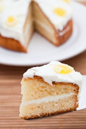 Slice of delicious lemon sponge cake Standard-Bild