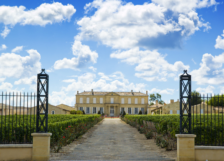 chateau: Vineyard and winery neer bordeaux Stock Photo