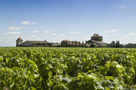 A famous winery in Bordeaux Stock Photo
