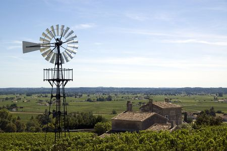 viniculture: Old windmill in a french vineyard near bordeaux