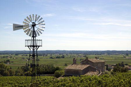 Old windmill in a french vineyard near bordeaux