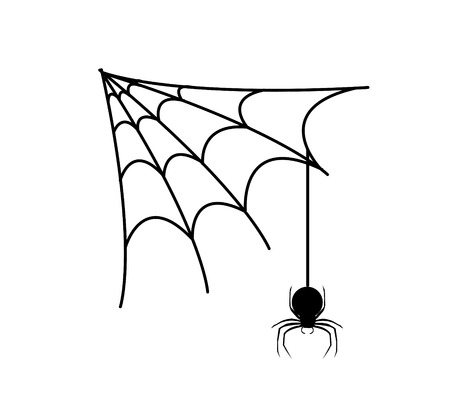 spiders web: spiders web ans spider