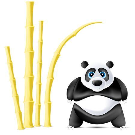 panda and bamboos photo
