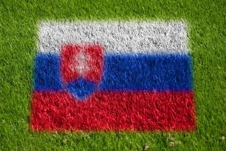 fairplay: flag of slovakia on grass with spray