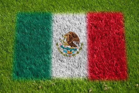 flag of mexico on grass with spray photo
