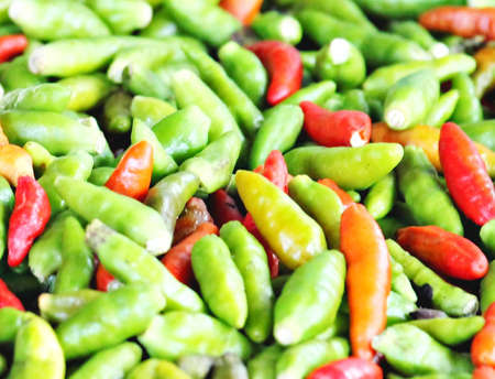bird s eye: Chilli Padi, Bird s Eye Chilli, Bird Chilli, Thai pepper