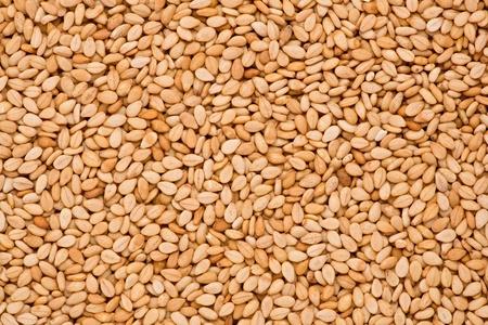 roasted sesame: Close up shot of roasted sesame seeds.