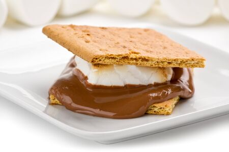 Tasty smore on plate with marshmallows in the background.