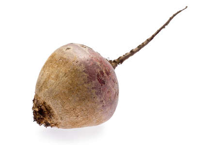 Single raw beetroot against a white background. Banco de Imagens