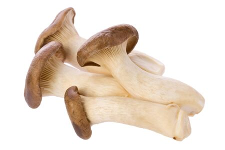 Several king oyster mushrooms against a white background.