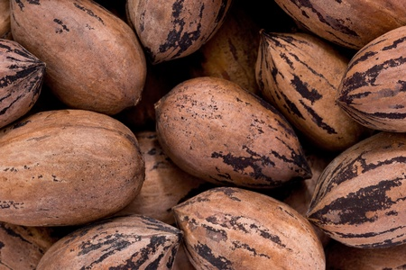 Background texture of a pile of whole pecans. Stock Photo