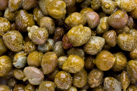 Background texture of several pickled caper buds.