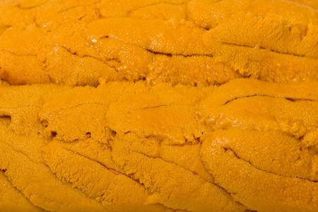 Background texture of fresh uni (sea urchin).