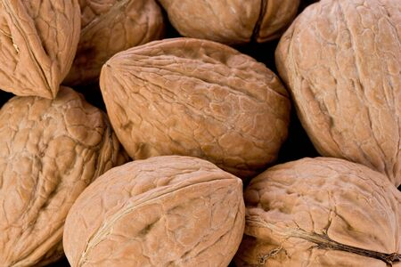 Background texture of walnuts in their shells. photo
