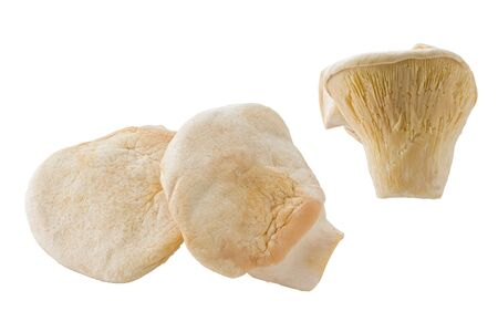 Composite of several bai-ling mushrooms against a white background.