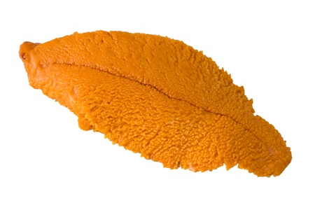 pilluelo: Sola rebanada de dulce uni (erizo de mar) sobre fondo blanco.