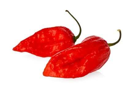 hottest: Two ghost peppers known as one of the hottest peppers in the world against a white background.