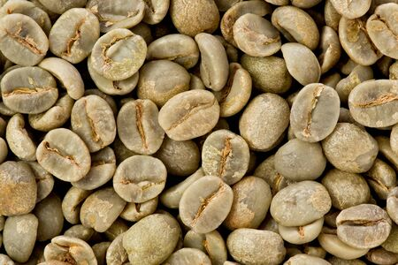 unroasted: Background texture of green unroasted coffee beans. Stock Photo
