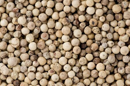 Background texture of whole white peppercorns.