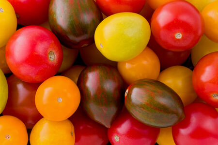 heirloom: Background texture of baby heirloom tomatoes. Stock Photo