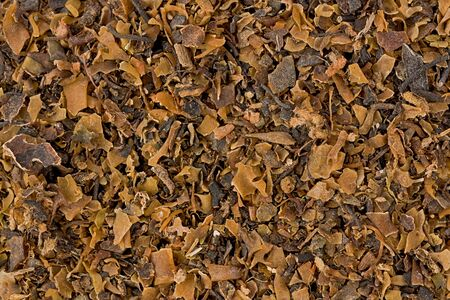 clarifying: Background texture of dried Irish moss, or carrageen moss. Stock Photo