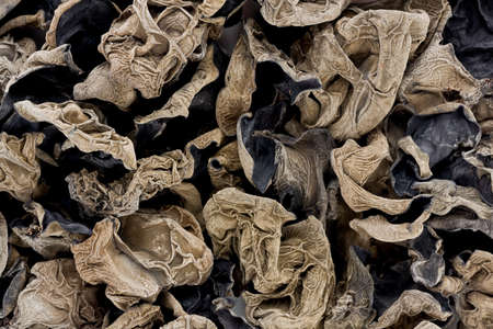 cloud ear fungus: Background texture of dried Cloud Ear Fungus, also known as Black Chinese Fungus.