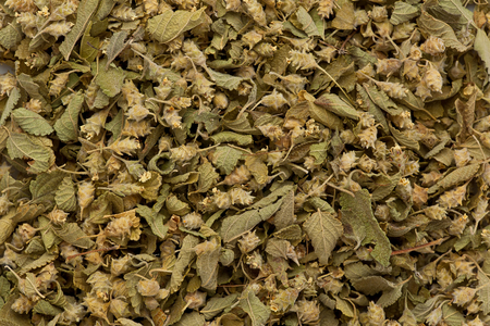 Background texture of dried mexican oregano.