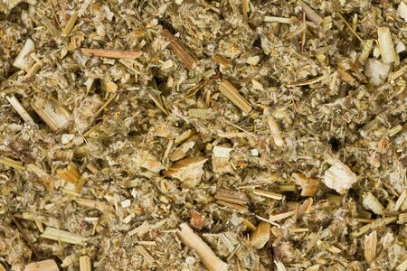 Background texture of dried Mugwort.