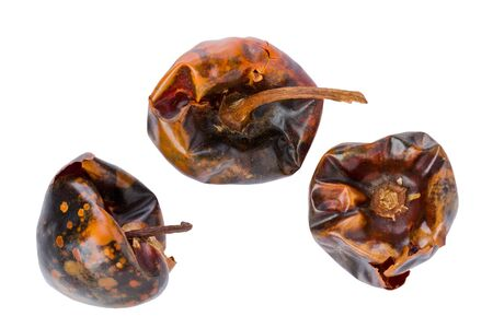 Three dried Cascabel chile peppers, also known as Rattle chile, against a white background. Stok Fotoğraf