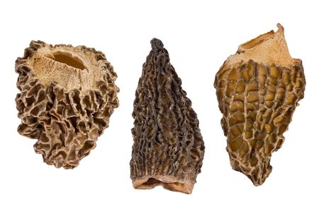 Composite of three dried Morel, or Morchella  mushrooms, against a white background.