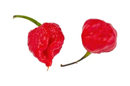 Two red, 7-Pot chile peppers on a white background.