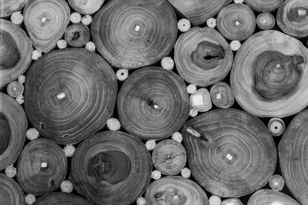 B&W Hordwood texture photo