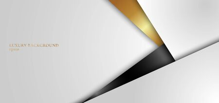 Abstract background elegant white, black and gold geometric triangle with light and shadow 3D layered for presentation design. Vector illustration