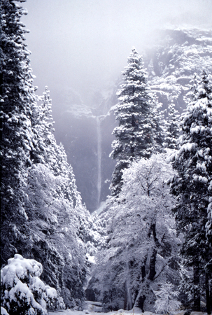 kaibab trail: Yosemite Falls, Lower Falls