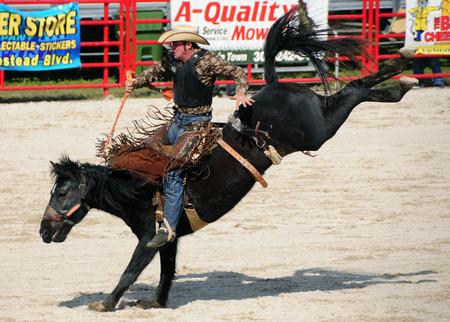 黒い馬に乗ってロデオ ライダー 写真素材