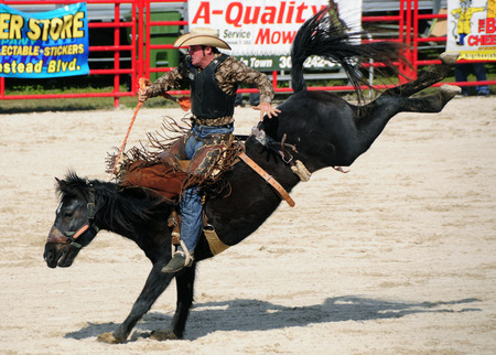 Rodeo rider on a black horse Stock Photo