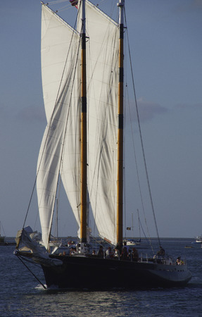 Black sailboat sailing in late afternoon