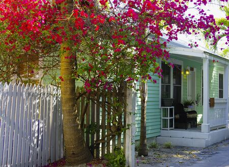 A typical scene in Key West streets