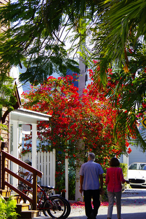 key west: Street scene, Key West  couple