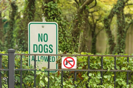 grass area: No Dogs and no guns Allowed On The Grass Area Sign