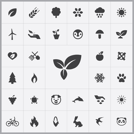pinguin: ecology icons universal set for web and mobile Illustration