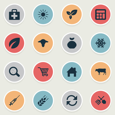 insolación: Vector Illustration Set Of Simple Agricultural Icons. Elements Snowflake, Cow, Virus And Other Synonyms Accounting, House And Plant. Vectores