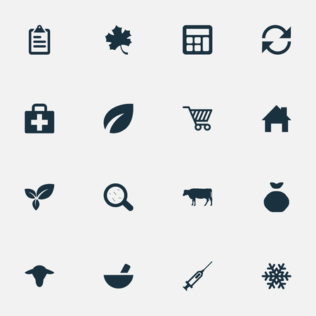 Vector Illustration Set Of Simple Agricultural Icons. Elements Ranch Home, Leaf, Cow And Other Synonyms Medicament, Buffalo And Flora.