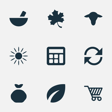 Vector Illustration Set Of Simple Harvest Icons. Elements Leaf, Medicament, Sack And Other Synonyms Arrow, Remedy And Buffalo. Çizim