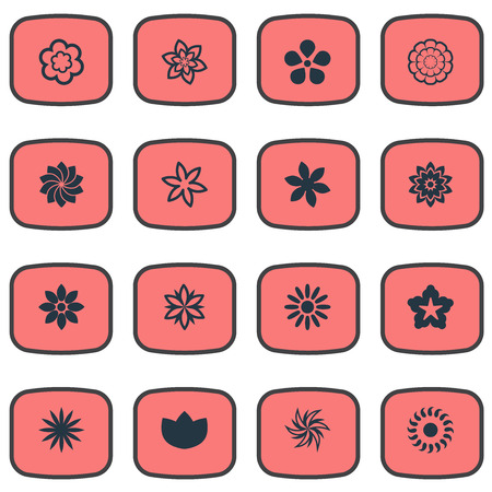 Vector Illustration Set Of Simple Flower Icons. Elements Gerberas;, Cypress, Bloom And Other Synonyms Pansy, Morning Glory And Sweet Pea.