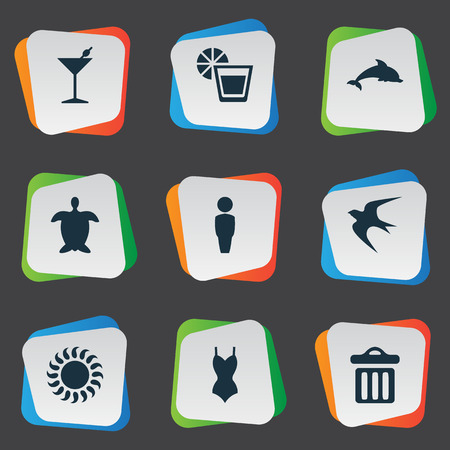 Vector Illustration Set Of Simple Beach Icons. Elements Beverage, Male, Tortoise And Other Synonyms Bar, Woman And Sun.