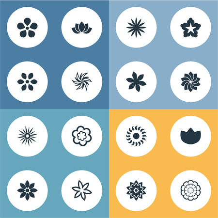 aster: Vector Illustration Set Of Simple Rose Icons. Elements Floral, Water Lily;, Camomile And Other Synonyms Aster, Flowers And Crocus.