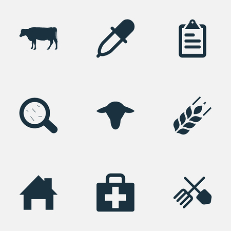 Vector Illustration Set Of Simple Agriculture Icons. Elements List, Pipette, Wheat And Other Synonyms Medicine, Buffalo And Medical.